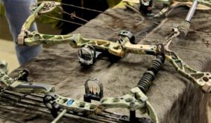 maintain Compound Bow