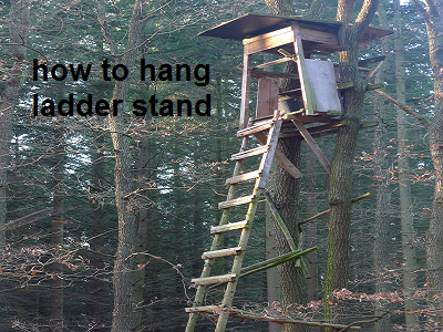 how to hang ladder stand