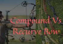 Compound Vs Recurve Bow