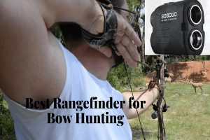 Best Rangefinder for Bow Hunting