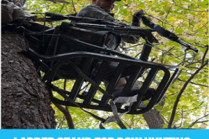 Best Ladder Stand for Bow Hunting