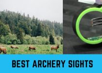 Best Archery Sights