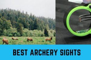 Best Archery Sights