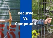 Recurve or Compound bow