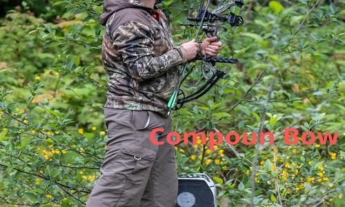 compoun bow