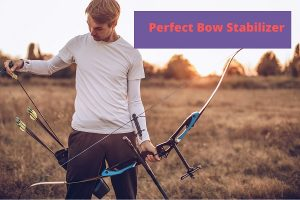 Perfect Bow Stabilizer
